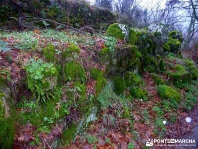 Valle del Ambroz-Sierra de Bejar - Gredos; rutas senderismo madrid;las cabrillas